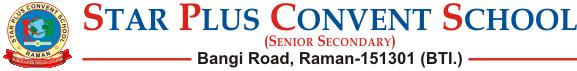 Star Plus Convent School